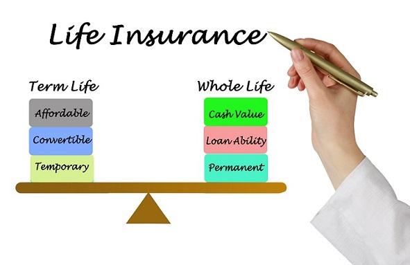 balancing whole and term life insurance